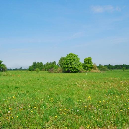 продажа земельного участка по Калужскому шоссе фото